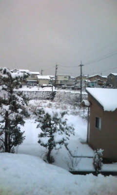 「snow」